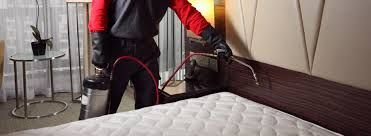 Bed Bug Exterminator Peoria AZ – How to Choose the Right One