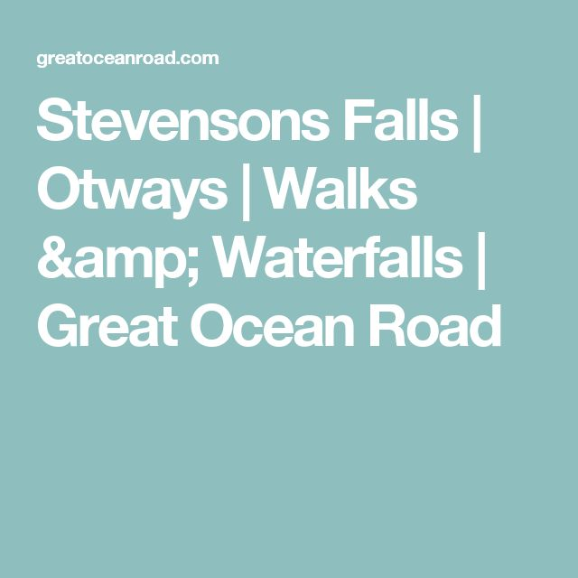 Stevensons Falls   Otways   Walks & Waterfalls   Great Ocean Road