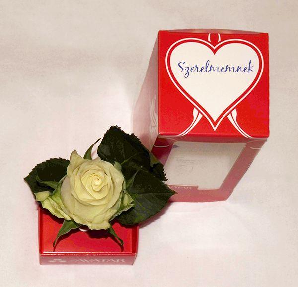 Világító virág - rózsa, Valentin nap, Tesco termék www.facebook.com/flavatar.hu #flAVATAR #glowsinthedark