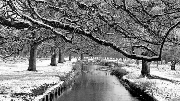 Winter Path - City Photography, Photography of London