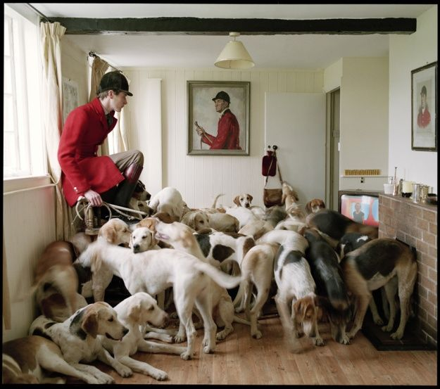 Otis Ferry and his Foxhounds, 2007. By Tim Walker. I would love to be in this room with all those dogs...