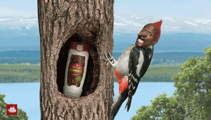 Old Spice | Checkmate