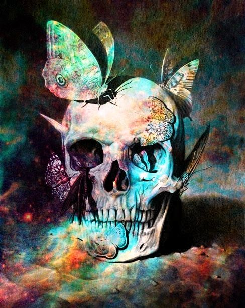 Skull and butterflies.
