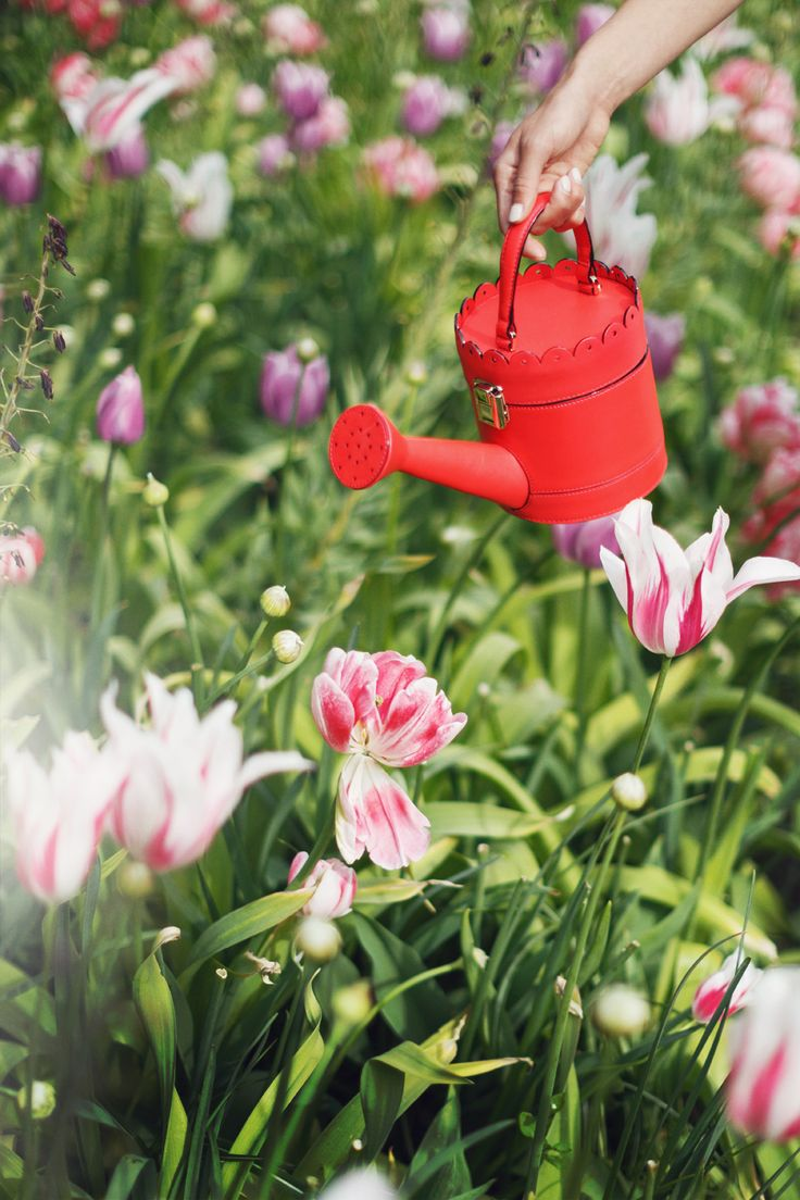 Kate Spade red watering can bag