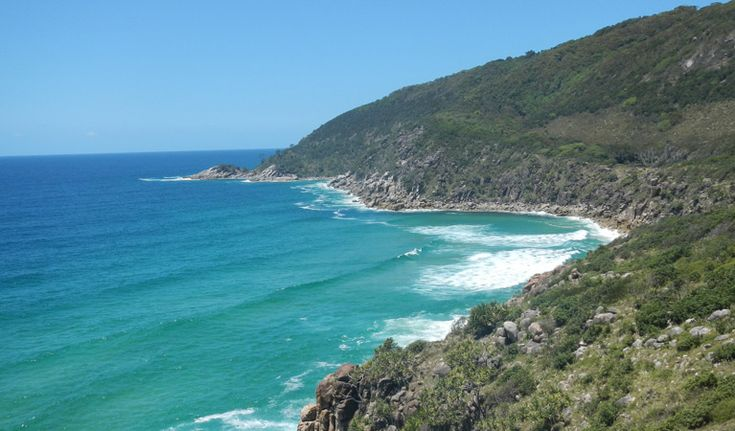 Little Bay to Smoky Cape Walk, Hat Head National Park. Photo: Debby McGerty
