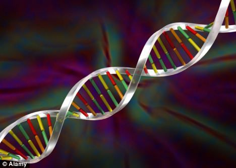 67 best Epigenetics \ Nutrigenomics images on Pinterest Gout - new blueprint gene expression