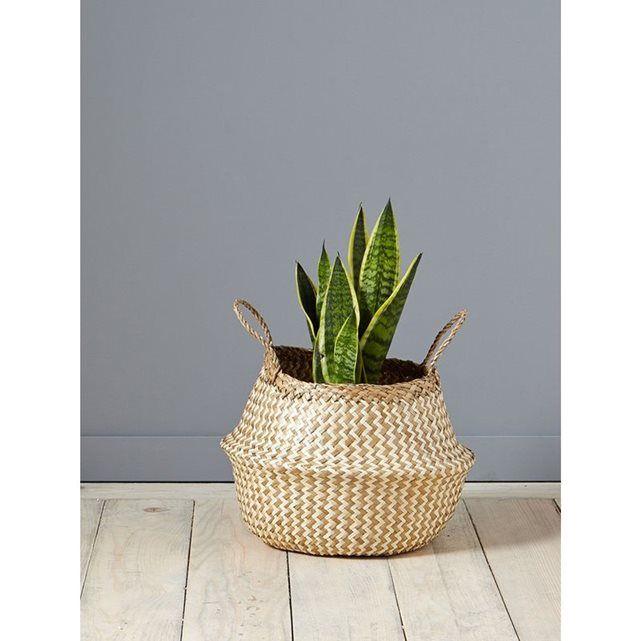 10 id es propos de paniers tress s sur pinterest paniers plantes vertes et plantes d 39 int rieur. Black Bedroom Furniture Sets. Home Design Ideas
