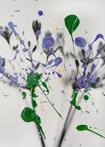 "Nanna Hanninen, ""Plant IX"" (2011) digital C-print on diasec, mounted on MDF with Oak frame."
