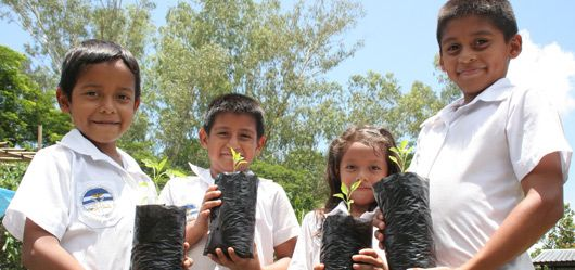 "Écoliers en El Salvador © FAO ""Learning"" gardens that produce a variety of nutritious foods and include educational goals can help students, school staff and families make the connection between growing food and good diets. Gardening activities, combined with eating the foods produced and learning about healthy dietary practices, can help promote better nutrition."