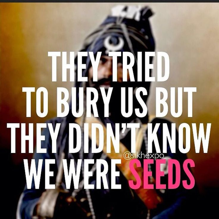 We are the #seeds | The Sikhexpo Board | Pinterest ...