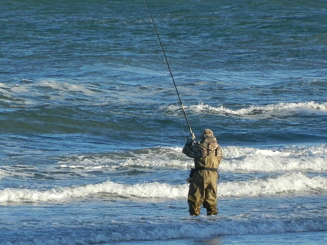 93 best images about padre island beach on pinterest for South padre island fishing report