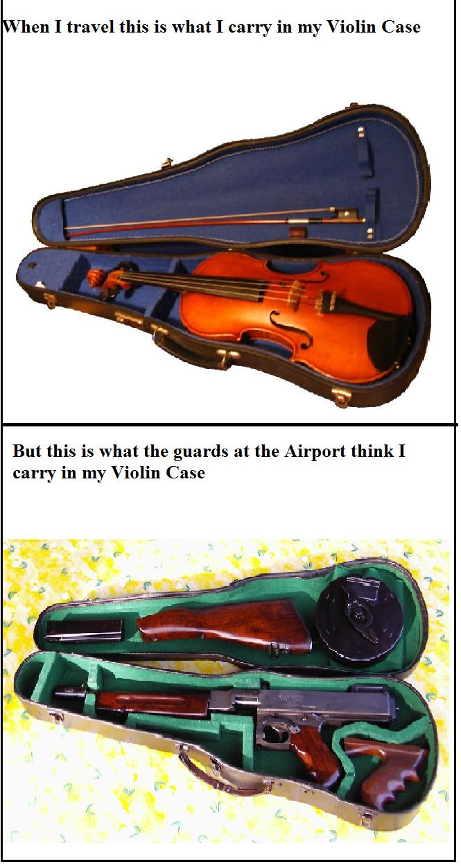 classical music humor on Tumblr #violin #violin_case #funny