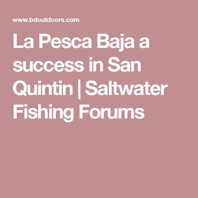 83 best Baja Bytes images on Pinterest Fishing and The ou0027jays - fishing resume