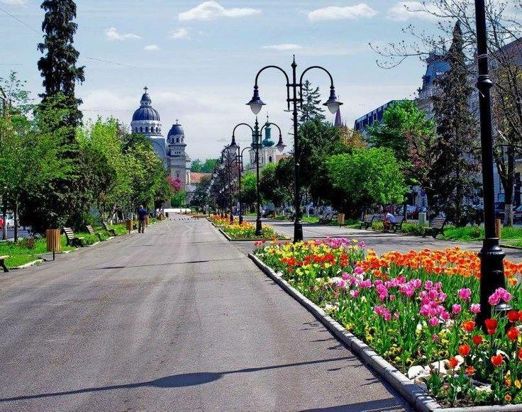 The Roses Square, Targu Mures, Transilvania Region, Romania