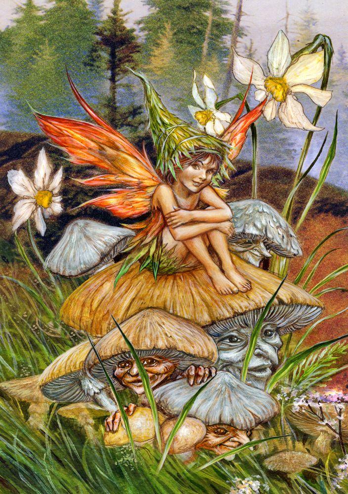 Mushroom Fairy   BUTTERFLIES, DRAGONFLIES & FAIRIES ...  Mushroom Fairy ...