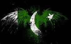 pakistan flag - Bing images