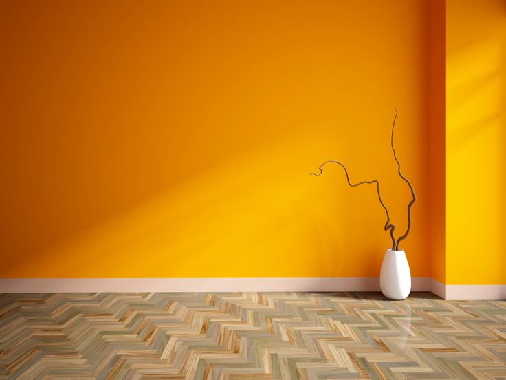 Interior painting gold coast.  Wall painters gold coast. Amazing wall colours, amazing painters