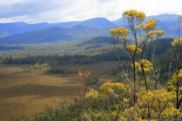 Destination Australia: The Western Wilderness of Tasmania.