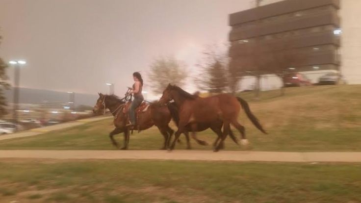 Woman on horse fleeing Fort McMurray fire