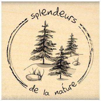 SPLENDEURS DE LA NATURE