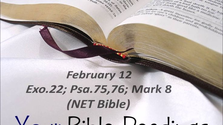 Your Bible Readings for February 12