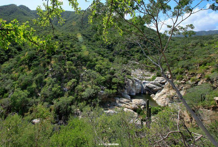 La Zorra canyon, Los Cabos  #josafatdelatoba #cabophotographer #mexico #bajacaliforniasur #loscabos #sanjosedelcabo #sierra #landscape