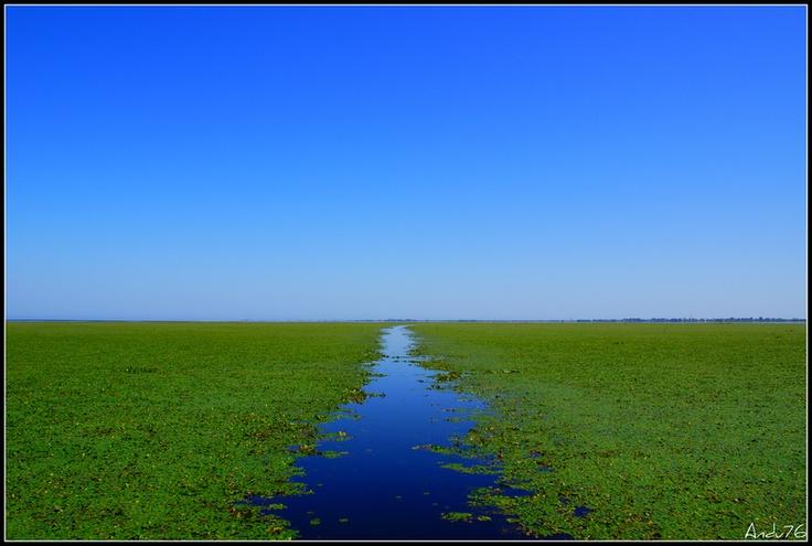 Danube Delta. Romania
