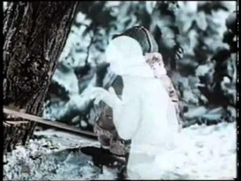 Dva Mrazíci.avi - YouTube
