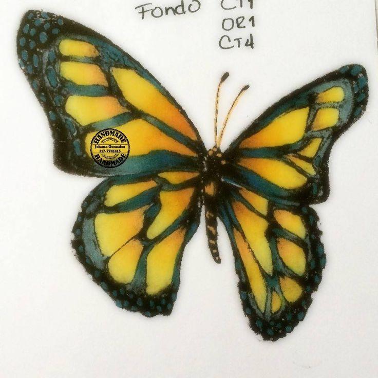 butterfly, spectrum