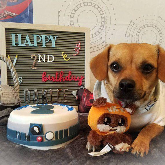 Star Wars Disney Inspired Cake Dog Birthday Cake Vegetariantreat Nautical Puppy Summer Unique Dogtreats H Dog Treats Dog Birthday Cake Easter Dog Treats
