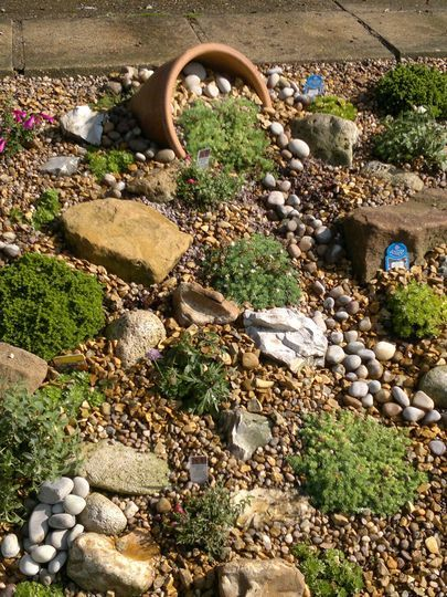 Alpine garden : Grows on You