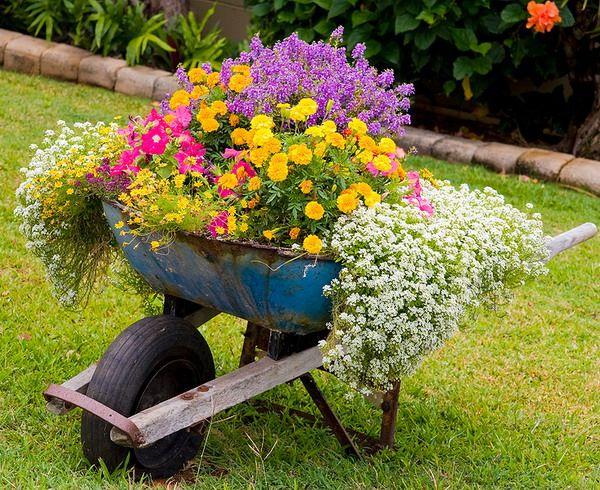 Создание авангардного сада MyGarden.ru - Мой любимый сад