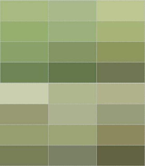 wände streichen farbpalette grün olivgrün