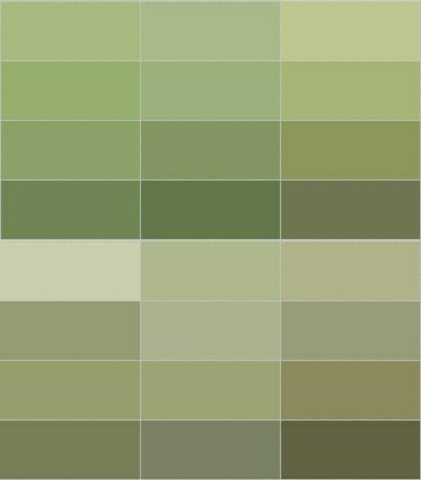 wohnzimmer olivgrün:Olive Green Wall Color