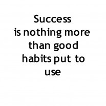 7 Habits of Success is a general purpose post on things to keep in mind as you do your best to create success for yourself.