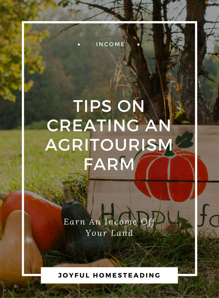 Agritourism farm income is a way to have a home business earning a part-time or even full time income off your land while you pursue self reliant living.