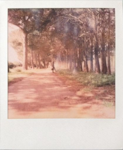 Impossible Project SX-70 film