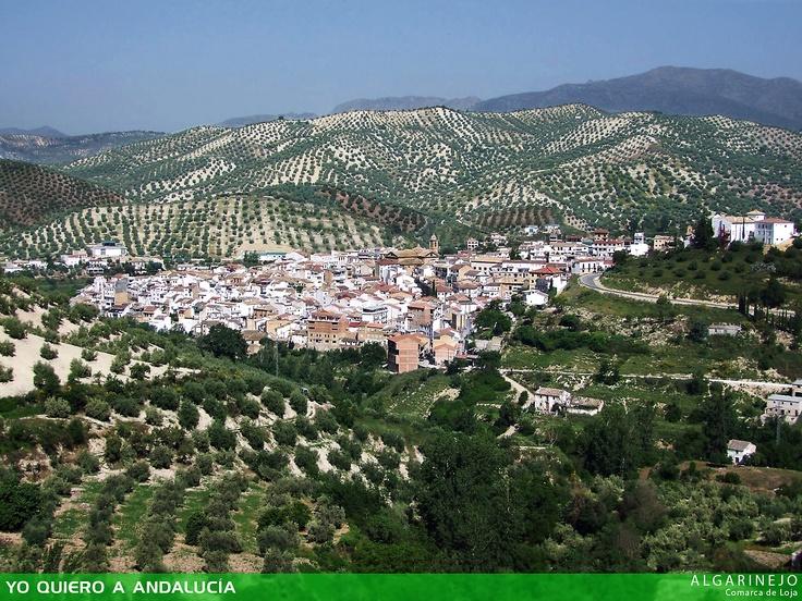 Algarinejo, municipio andaluz situado en la parte noroccidental de la comarca de Loja, Granada.