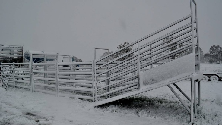 Photo: Sharryn McCormack. Taralga snow 12/10/2012