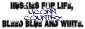UConn Huskies, bleed blue and white