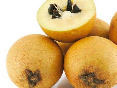 Sapoti - nativo da América Central, seu fruto é marrom e carnudo. É comum no Nordeste do País.