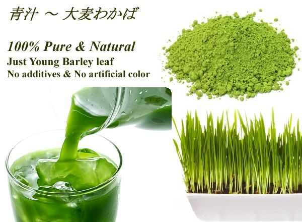 -- Matcha Tast with No Bitterness! Japanese Super Barley Green leaf Powder Drink ----- ★ AOJIRU - Japanese Young Barley Green Grass Powder Juice is taste like Matcha Green tea powder with No Bitterness!  ● 100% Pure & Natural, Just Young Barley Green Leaf Powder!