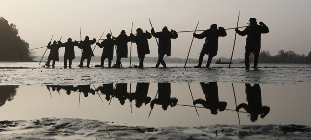 Fishermen pull a net containing fish from a lake at the village of Bosilec near the south Bohemian town of Trebon, during the traditional carp haul, November 7, 2011. Carp, traditionally served at Czech Christmas Eve dinners, is fished mostly from southern Bohemian lakes. (REUTERS/Petr Josek)