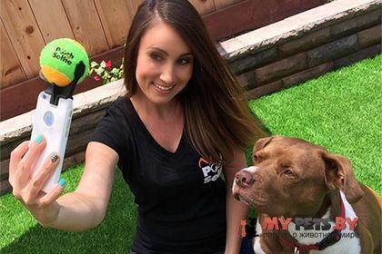 Американская компания представила устройство для собачьего селфи. Недавно компанией Clever Dog Products было представлено устройство Pooch Selfie (что означает «собачье селфи»). Владельцы собак, которые обожают фотографироваться со своими любимцами, будут ...