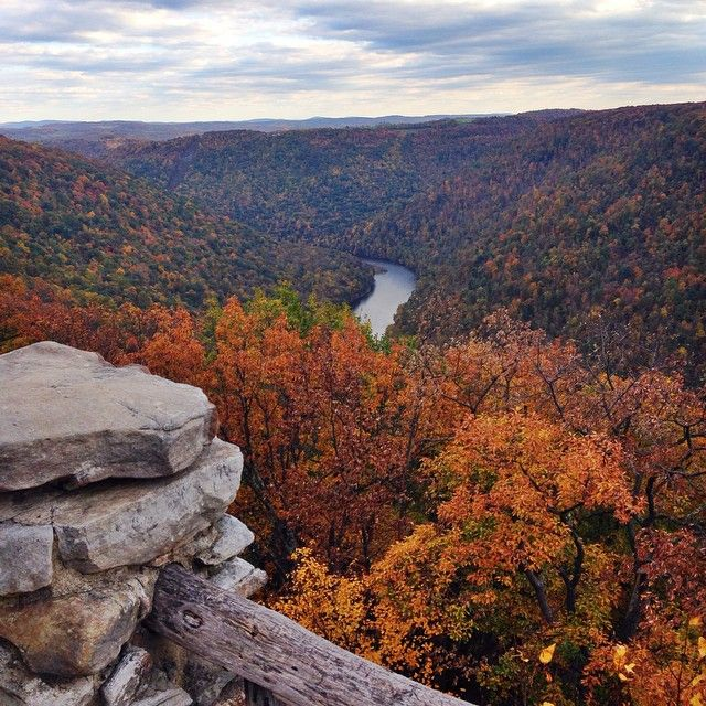 Every day is a win for West Virginia when the entire state is beautiful. Cooper's Rock just outside Morgantown, WV.  #wvu #pride #westvirginia #coopersrock #nature #environment #nofilter #travel #instatravel #instagood #igers #baylor #mountaineers #wv