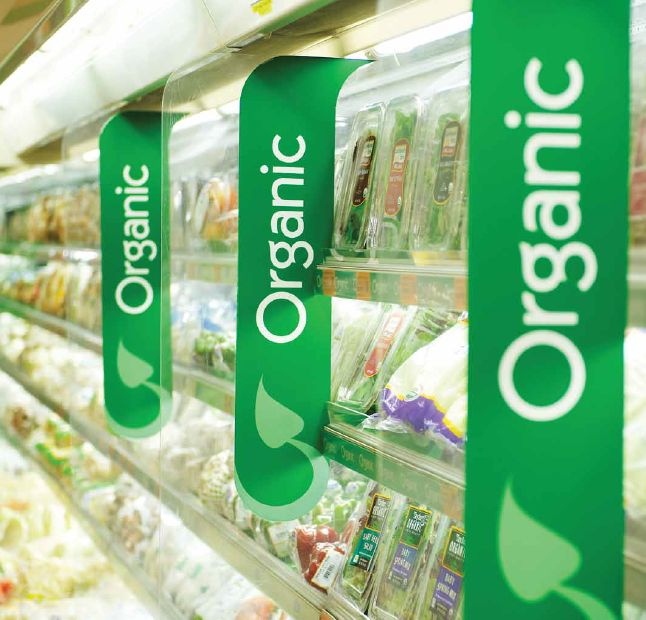 Affordable Organic Singapore