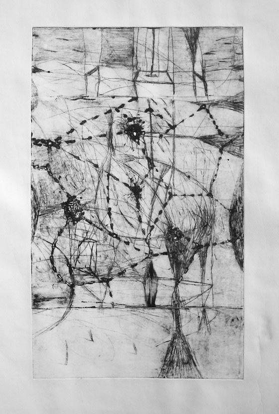 Csaba Pal, Incubation_02, dry point, 63x39cm,
