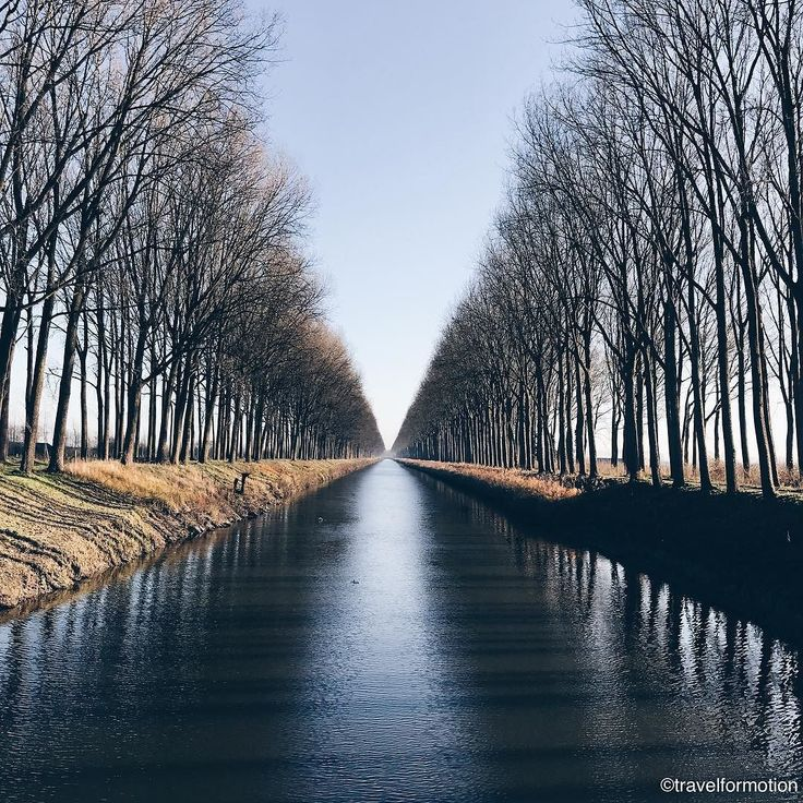 Spending the day #outside #today in the #beautiful #cold #weather #trees #channel #winter #landscape #blue #sky #vsco #vscocam #guardiantravelsnaps #visitflanders #roadtrip #travel #wanderlust #belgium_unite #belgium #igbelgium #flanders #shotoniphone7plus