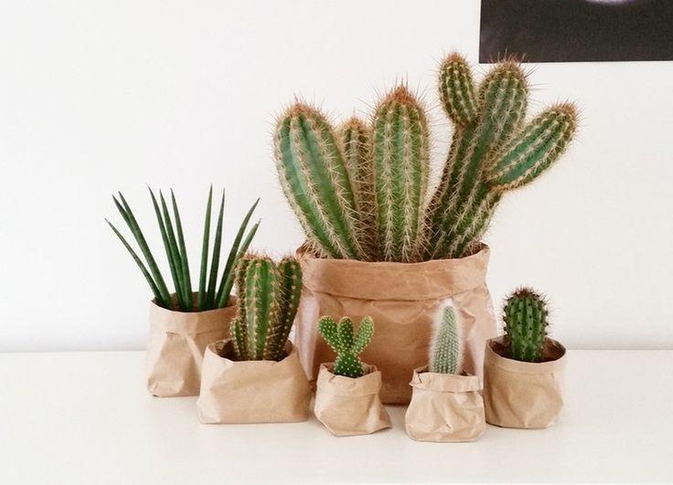 DIY Vasen aus Papier