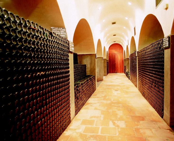 Tags: Vinos, Bodegas, Cafayate, Salta, Argentina. www.bodegasetchart.com.ar